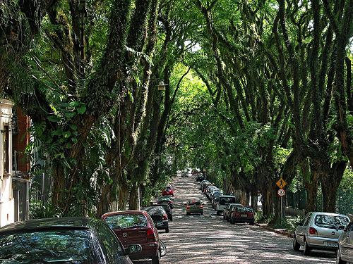 A rua mais bonita do mundo em Porto Alegre